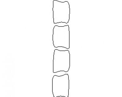 2021 AUDI RS6 DOORS FRONT